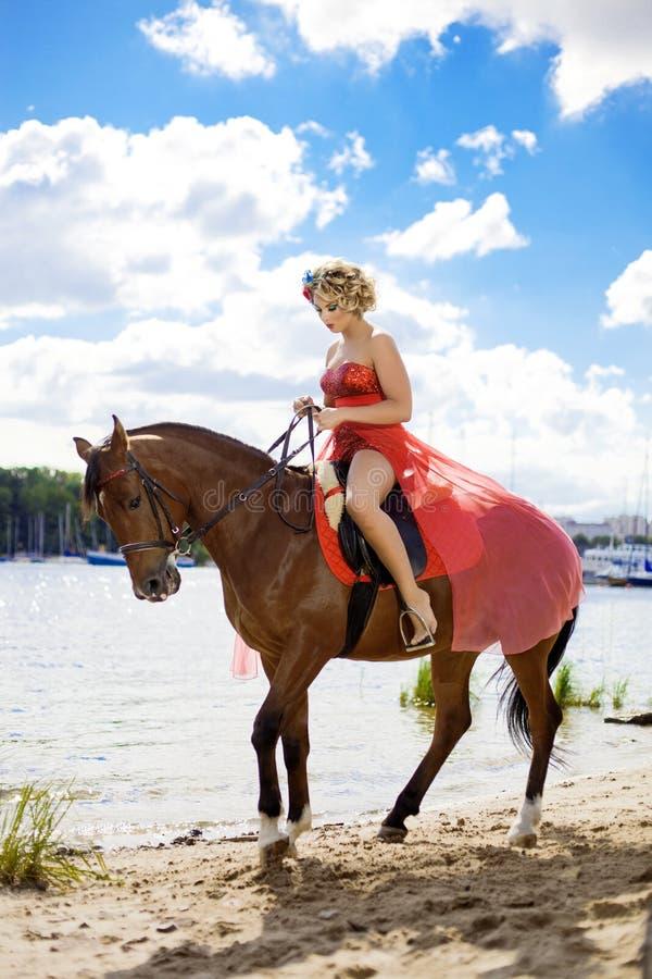 Femme avec le renivellement lumineux sur le cheval à l'extérieur photographie stock