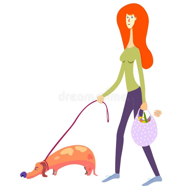 Femme avec son chien et avec le sac d'épicerie promenade avec le teckel et les achats d'animal familier illustration de vie quoti illustration libre de droits