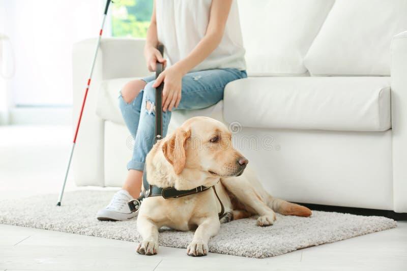 Femme aveugle avec le chien de guide se reposant sur le sofa photographie stock
