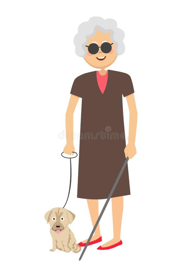 Femme aveugle supérieure se tenant avec le chien de guide illustration stock