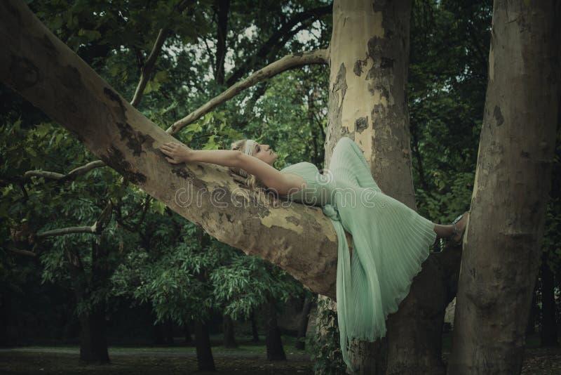 Femme blonde assez jeune dans le mensonge romantique de robe l'été d'arbre photographie stock libre de droits