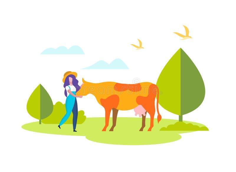 Femme chez la vache à caresse de façon générale sur le champ, cultivant illustration stock