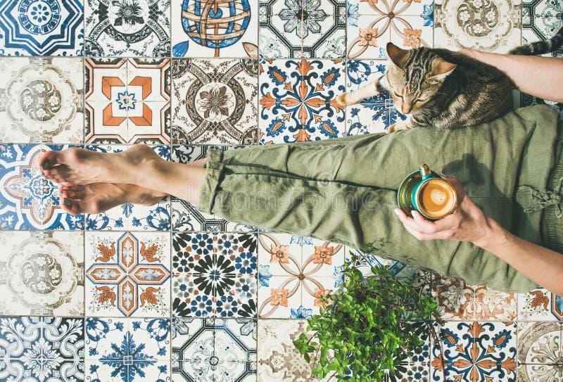 Femme, coffe et chat image libre de droits