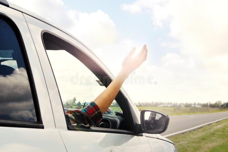 Femme collant le bras de la voiture photos libres de droits