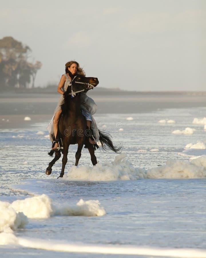 Femme conduisant le cheval sauvage sur la plage photo libre de droits
