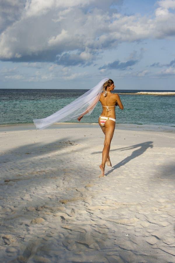 Femme courant dans le voile nuptiale images libres de droits