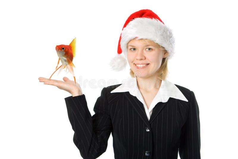 Femme d'affaires avec des poissons dans le chapeau rouge de Santa photographie stock