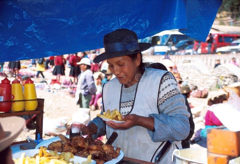 Femme d'Amerindian photo libre de droits