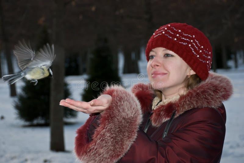 femme d'oiseau image libre de droits