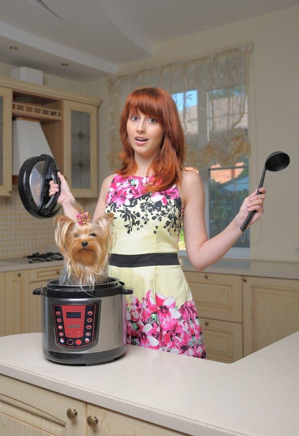 Femme d'une chevelure rouge avec le nouveau multicooker et le petit chien image libre de droits