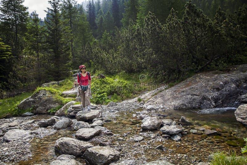 Femme dans la forêt photographie stock libre de droits