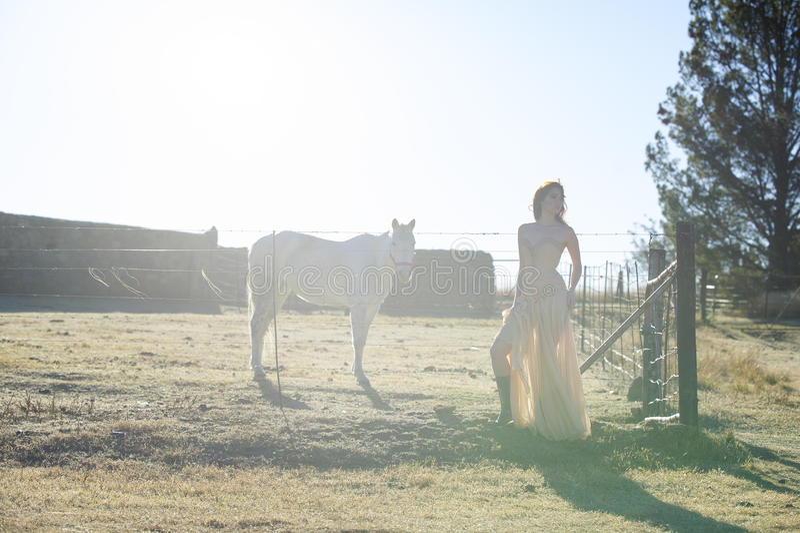Femme dans la robe d'or à côté du cheval blanc photos stock