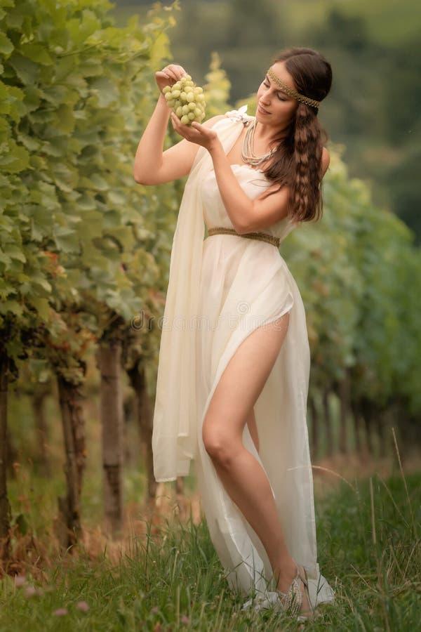 femme dans la tunique moissonnant des raisins photographie stock