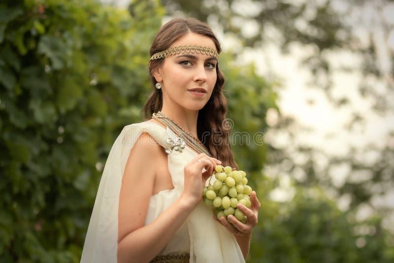 Femme dans la tunique moissonnant des raisins photo libre de droits