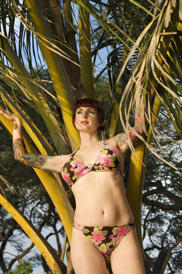Femme dans le bikini. image stock