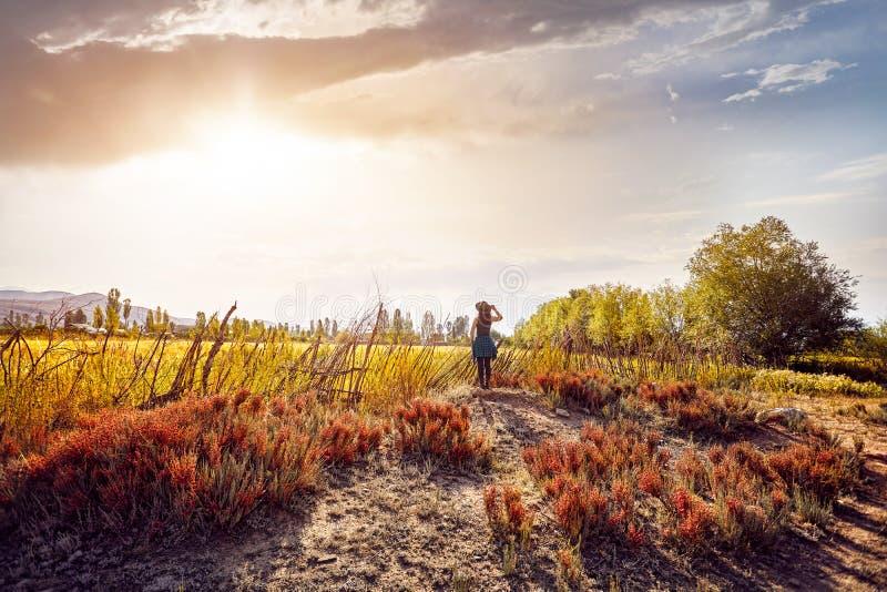 Femme dans le chapeau sur le champ au coucher du soleil images stock