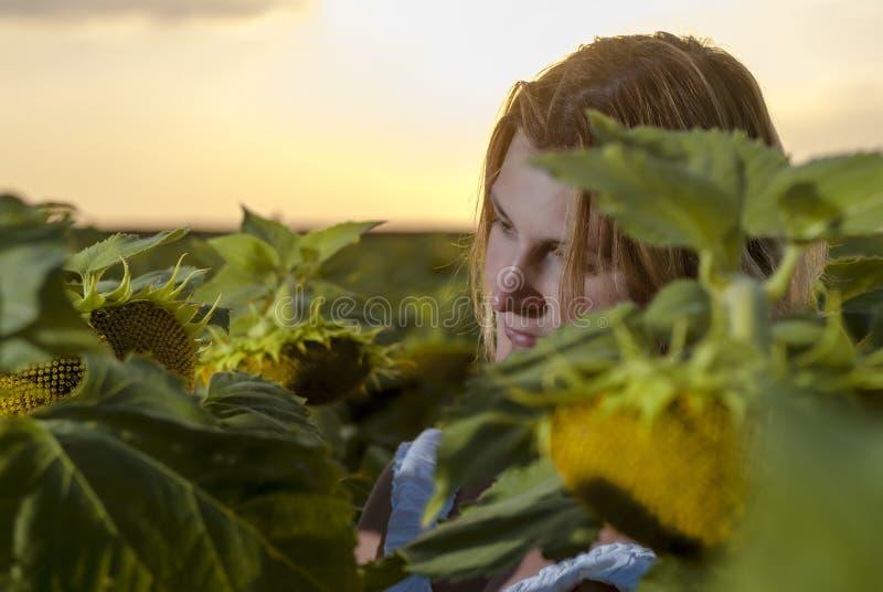 Femme dans le domaine de fleur du soleil photographie stock
