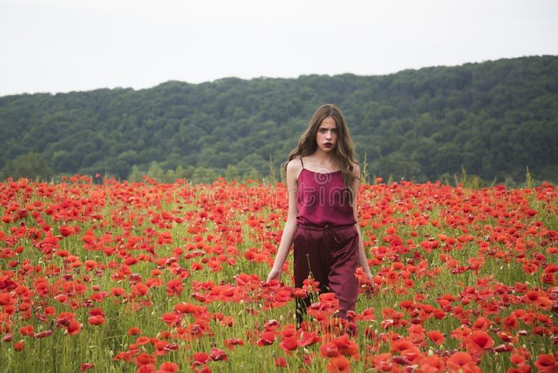 Femme dans le domaine de fleur de pavot, récolte photos libres de droits