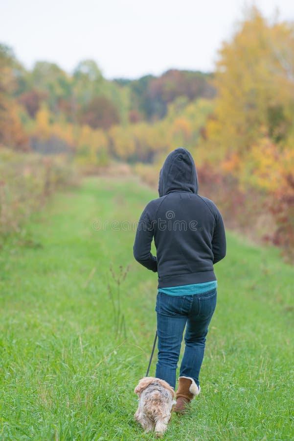 Femme dans le hoodie marchant sur le chemin d'herbe avec le chien de terrier de Yorkshire un jour croquant d'automne dans un sect photos stock