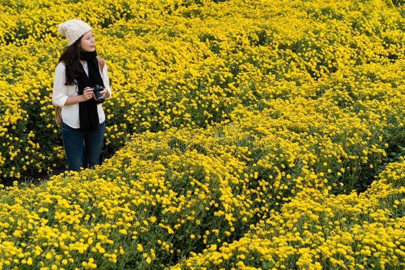 Femme dans le jardin de chrysanthème au Vietnam photographie stock