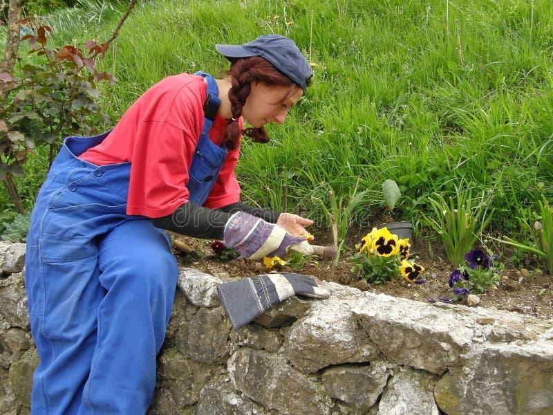 Femme dans le jardin de fleur images libres de droits