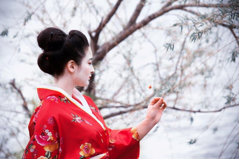 Femme dans le kimono rouge regardant la fleur photo stock