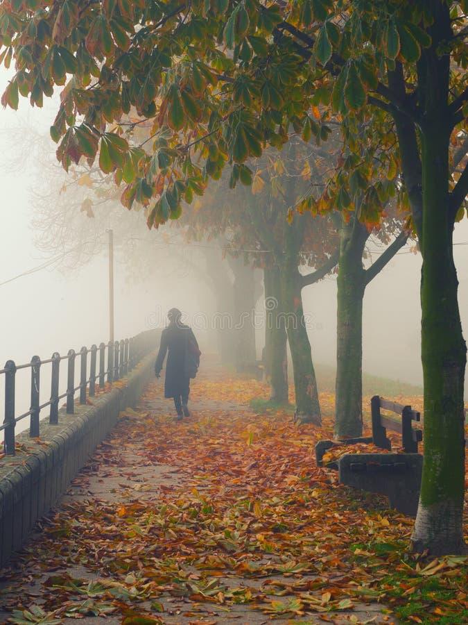 Femme dans le noir descendant l'allée le jour brumeux d'automne photos stock
