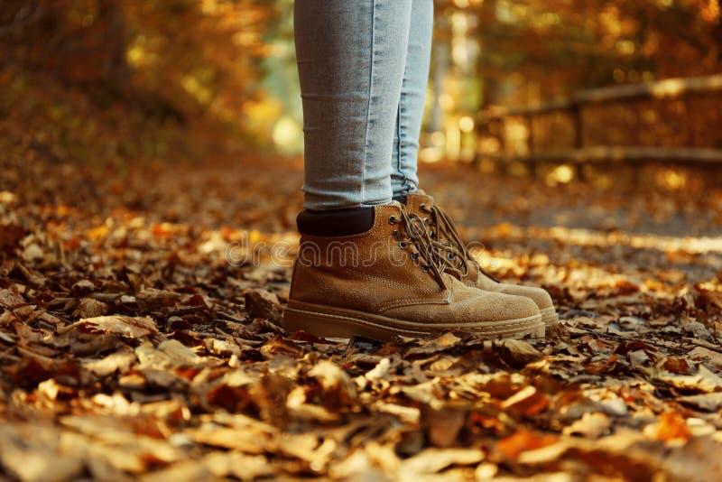Femme dans les bottes élégantes se tenant sur la voie couverte de feuilles d'automne photos stock