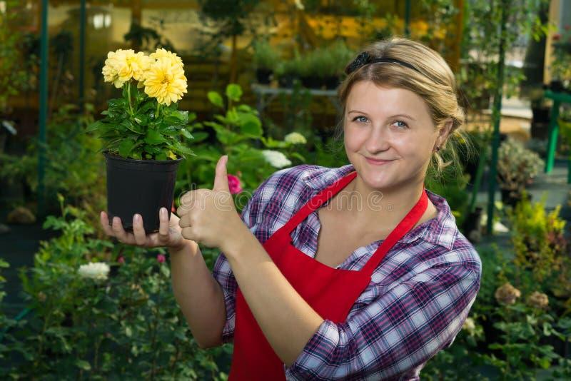 Femme dans un jardin tenant une belle fleur jaune image stock