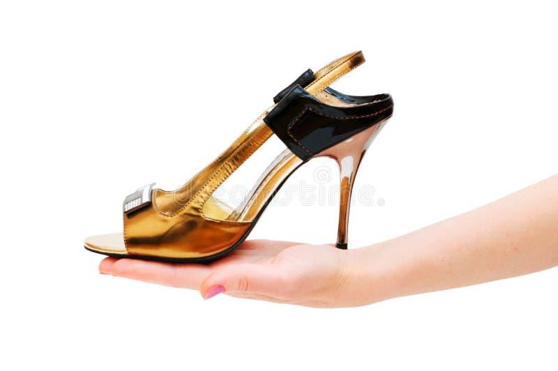 femme de chaussure de fixation de main photos libres de droits