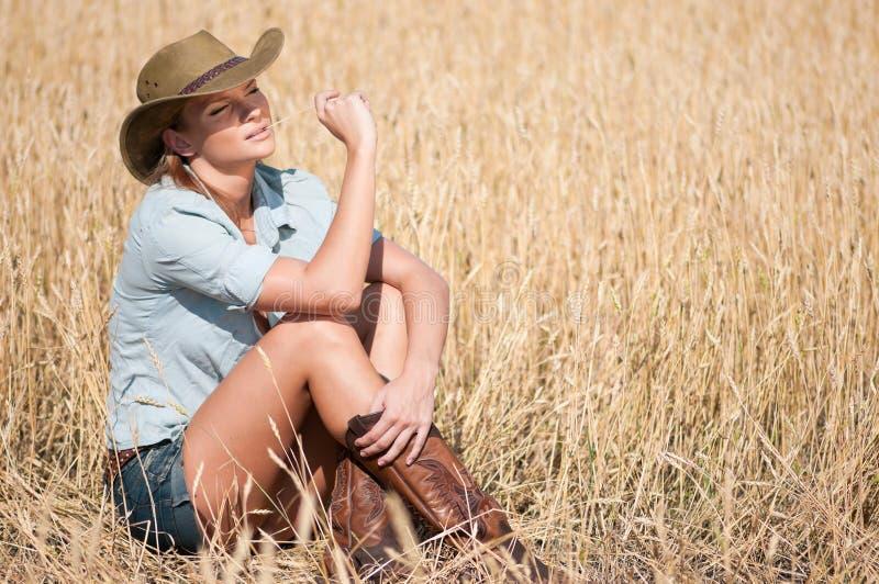 Femme de cowboy dans le domaine de blé de pays images libres de droits