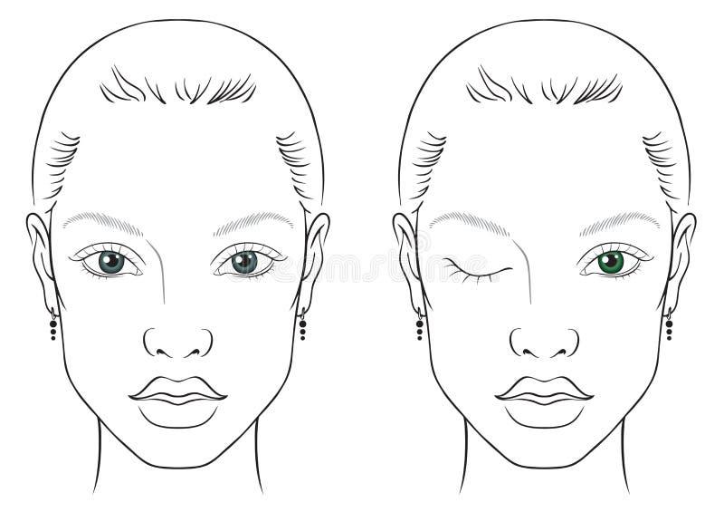Femme de diagramme de visage images libres de droits
