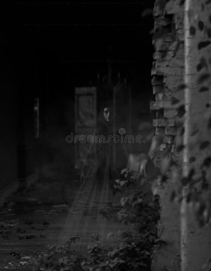 Femme de Ghost dans la maison hantée illustration de vecteur
