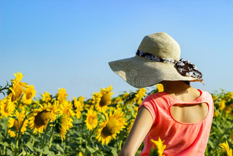 Femme de hippie avec le chapeau de paille dans le domaine des tournesols La fille de voyage apprécient le coucher du soleil d'été images libres de droits