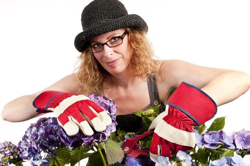 Femme de jardinage avec des sécateurs images stock