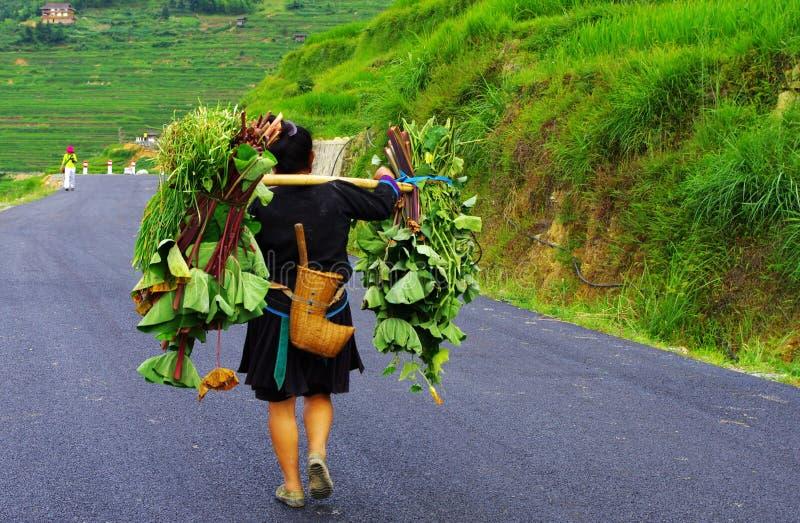 Femme de minorité dans le costume traditionnel, porcelaine photographie stock