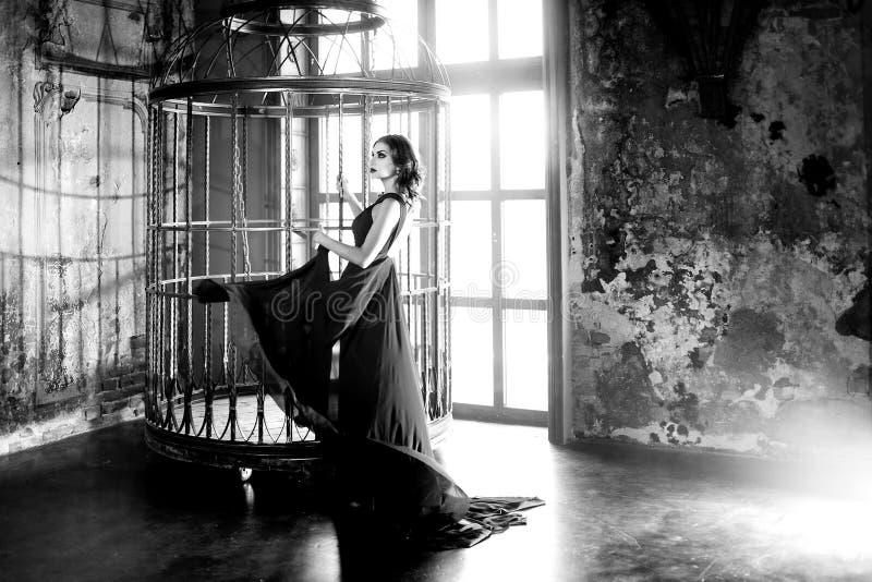 Femme de modèle de brune de beauté dans la robe de soirée près d'une cage énorme photo libre de droits
