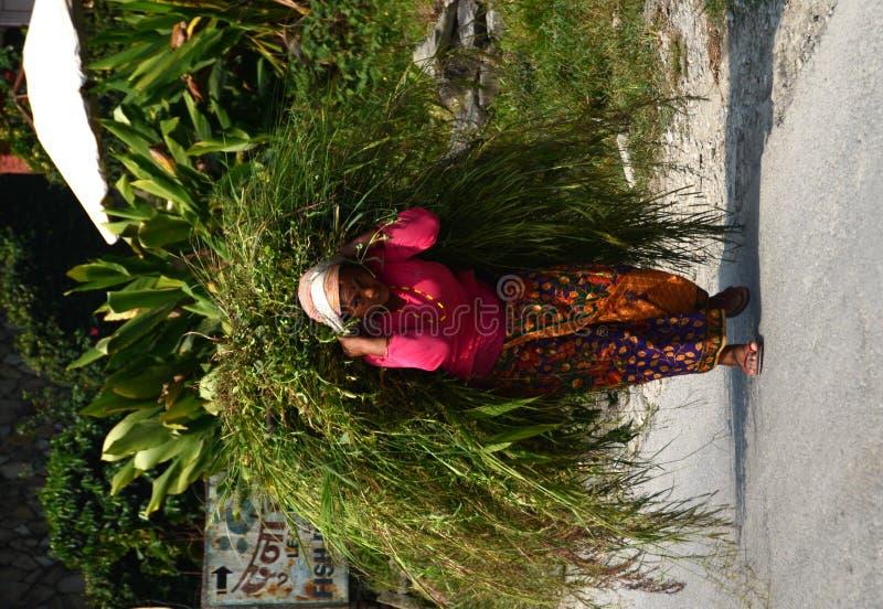 Femme de Nepali dans un petit village photo libre de droits