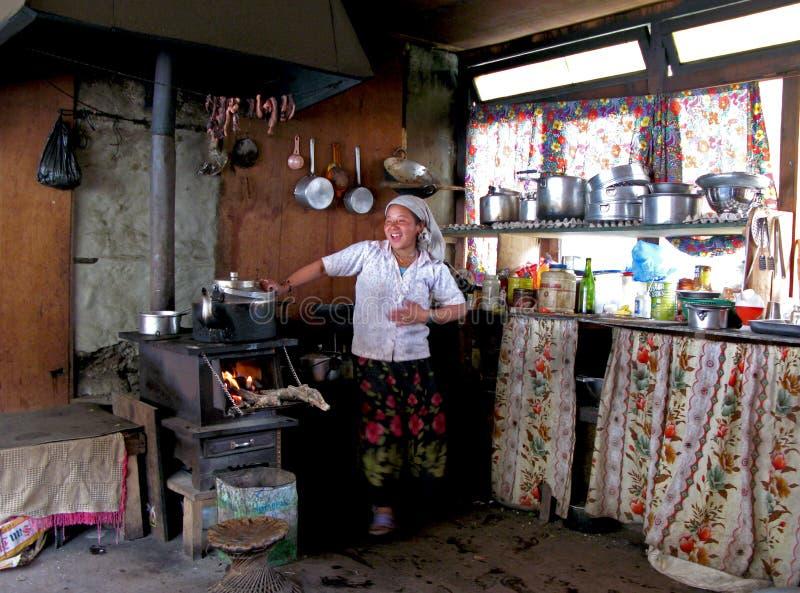 Femme de Nepali faisant cuire dans sa loge de l'Himalaya photo libre de droits