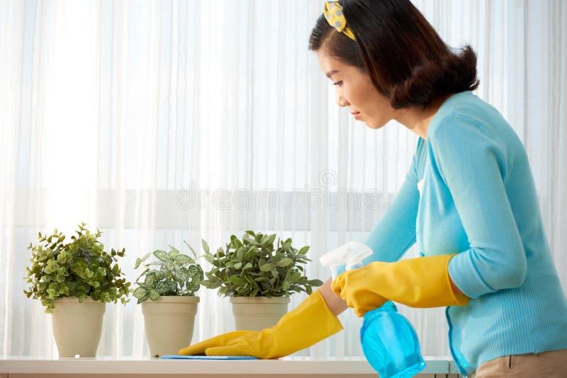 Femme de nettoyage photos stock