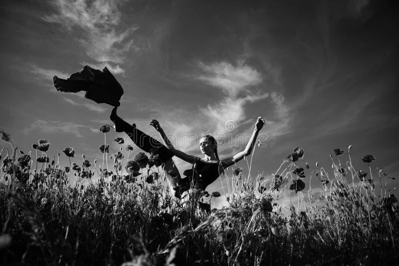 femme de pose à la mode jolie fille dans le domaine de fleur du clou de girofle photographie stock libre de droits