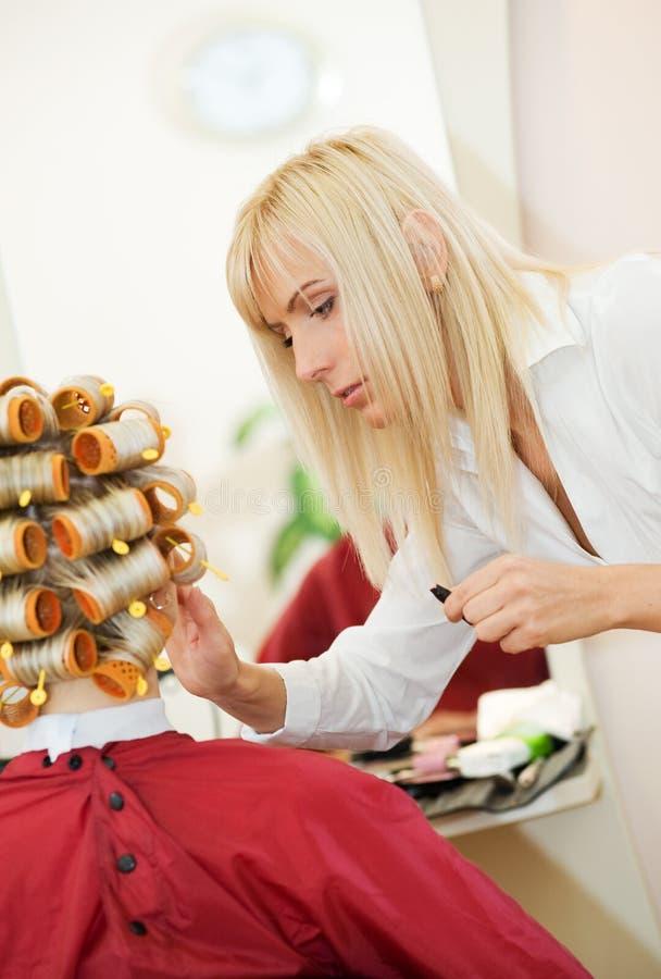 Download Femme de salon de beauté photo stock. Image du client - 8661922