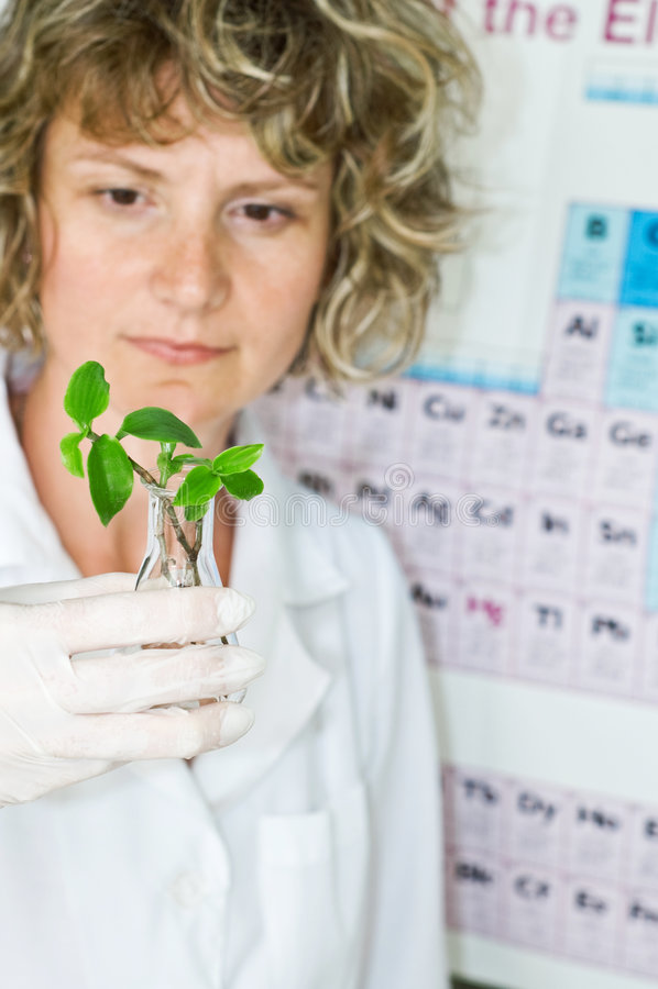 femme de scientifique photo stock
