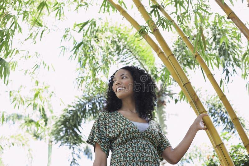 Femme de sourire dans la forêt en bambou photo libre de droits