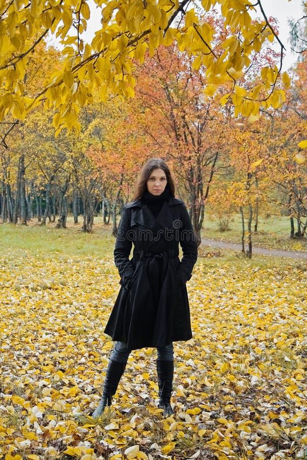 Femme en stationnement d'automne photos stock