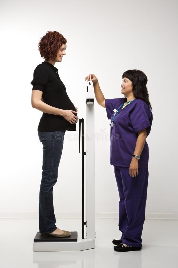 Femme enceinte étant pesée. images stock