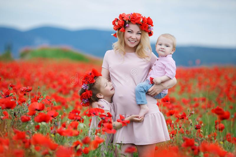 Femme enceinte avec des enfants dans un domaine des pavots rouges photo libre de droits