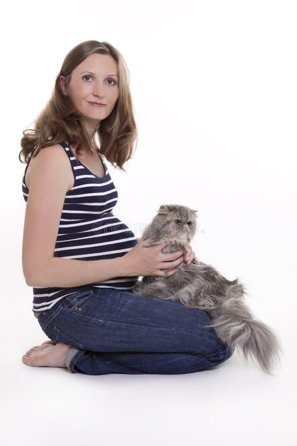 Femme enceinte avec le chat persan photographie stock