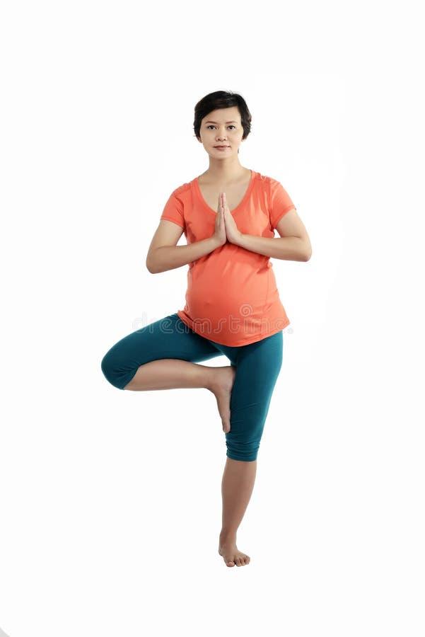 Femme enceinte d'Asiatique faisant le yoga images libres de droits