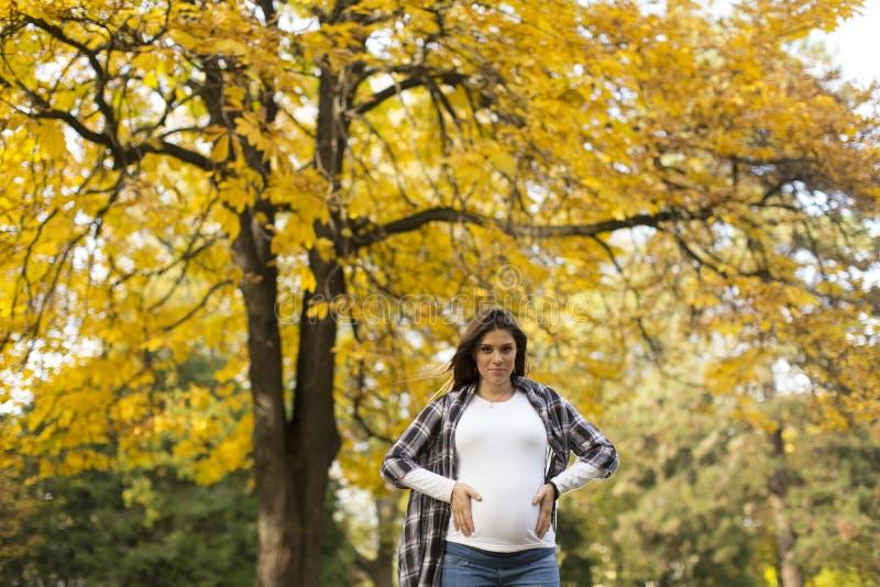 Femme enceinte en stationnement d'automne photo stock